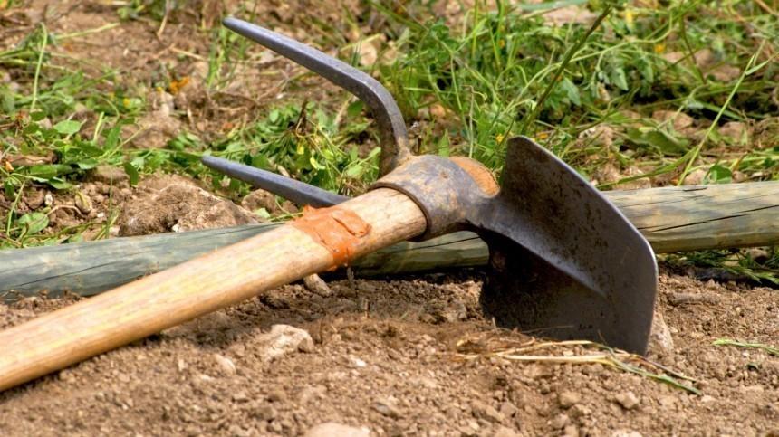 Мясник ссобутыльником убили третьего изакопали его влесу