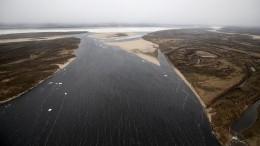Якутск соединят сРоссией: Путин одобрил строительство моста через реку Лену