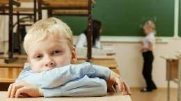 Директор рассказала омассовом отравлении детей вшколе под Нижним Новгородом