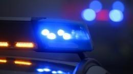 Хулиганка разбила авто полицейских иударила одного изних поуху