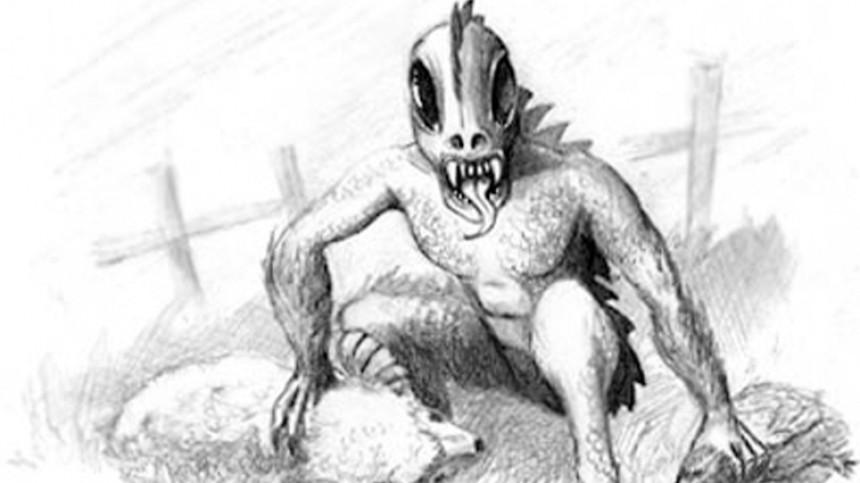 Загадочное существо загрызло овцу ирастерзало гусей вГермании