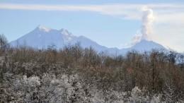 Вулкан Шивелуч наКамчатке выбросил пепел навысоту шести километров