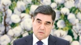 Президент Туркменистана объяснил, как должен выглядеть памятник алабаю