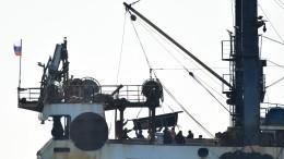 Группу из19 белух, содержавшихся в«китовой тюрьме», выпустили вЯпонское море