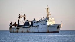Последних белух из«китовой тюрьмы» выпустили вбухте Успения вПриморье