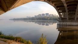 Двое мертвых мужчин идве убитые кошки найдены вМосква-реке