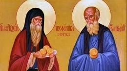 День преподобных Никодима иСпиридона: что нужно успеть сделать 13ноября