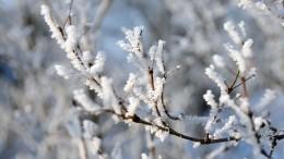Гидрометцентр предупредил россиян обаномальных холодах