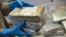 ФСБ изъяла 440 килограммов наркотиков изинтернет-магазина вдаркнете
