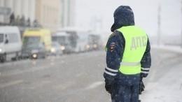 Пешеход полоснул сотрудника ГИБДД полицу вПодмосковье— видео