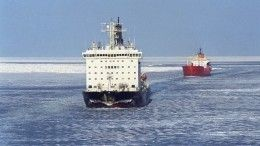 Делегаты из20 стран прибыли вПетербург наАрктический форум