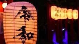 Айкидо, шашки исуши: Как прошел фестиваль «День Японии» вПетербурге
