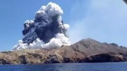 Более 30 человек пострадали при извержении вулкана вНовой Зеландии