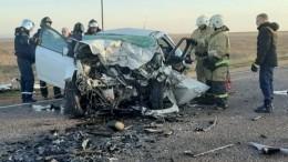 Жуткие кадры сместа ДТП, вкотором погибла глава администрации Черноморского района Людмила Глушко