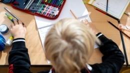 Школьников могут избавить отдомашних заданий нановогодние праздники