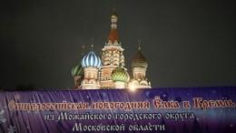 Главную новогоднюю ель России доставили вКремль