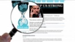 WikiLeaks уличила ОЗХО вподмене фактов о«химатаке» вСирии