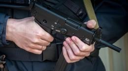 Автоматы «Кедр», Калашникова иПистолет Макарова: эксперт оценил найденный под Гатчиной арсенал
