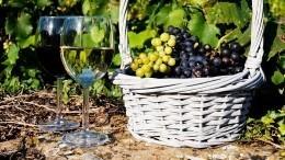 Вино, анерезультат химических экспериментов: Госдума приняла закон овиноделии