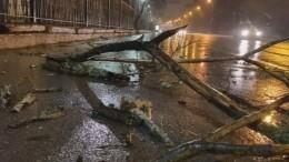 Оборванные провода, разбросанные фуры: сильнейший шторм накрыл Петербург