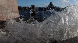 Видео: Ураган испытал Петербург напрочность