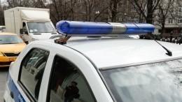 Подпольный автосалон спохищенными иномарками обнаружен вЛенобласти