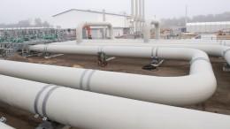 ВСША рассказали ореакции стран ЕСнасанкции по«Северному потоку-2»