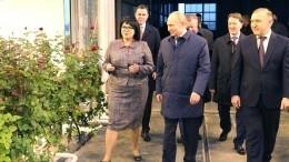 Аграрии Адыгеи показали Путину, как выращивают розы при помощи высоких технологий