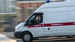 Видео: двух братьев расстреляли уокеанариума вПетербурге