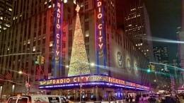 Рождественские каникулы: Как власти США иВеликобритании проведут Сочельник