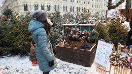Незаконные базары: Как выбрать безопасную для здоровья елку— видео