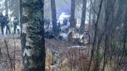 Видео момента ДТП: BMW врезался вдерево иразлетелся начасти вжуткой аварии под Петербургом