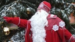 Мужчина вкостюме Деда Мороза вПензе раздавал детям снюс вместо конфет