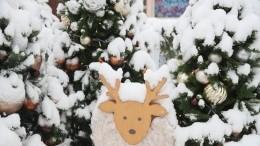 Снегопад обрушился наПетербург