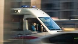 Причиной падения гимнастки вцирке Владивостока назвали человеческий фактор