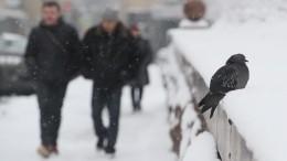 Десятки регионов России накроют метели иураганный ветер