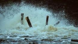 ВПриморье приступили кчистке русла рек