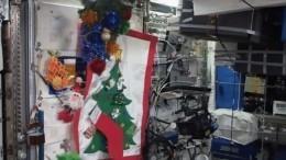 Видео: наМКС нарядили новогоднюю елку