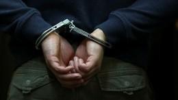 Один иззадержанных поподозрению вподготовке теракта вПетербурге арестован