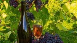 Обнародован текст закона овиноделии: странные напитки больше несмогут маскироваться под вино