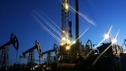 Белоруссия приостановила экспорт нефти