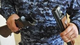 Сибиряк стрелял вНовый год изоружия ипопал влицо шестилетнему мальчику