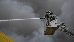 Площадь пожара вторговом комплексе под Новосибирском достигла трех тысяч «квадратов»