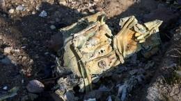 Иранская ЗРС поошибке сбила украинский Boeing, предположили вСША
