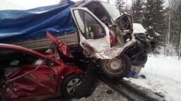 Девять человек, втом числе четверо детей, пострадали вДТП савтобусом под Пермью