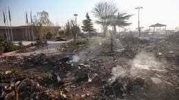 США передали Украине данные окрушении Boeing-737 под Тегераном