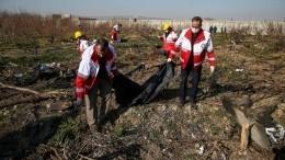 УКиева нет оснований считать, что наборту разбившегося вИране Boeing-737 был теракт