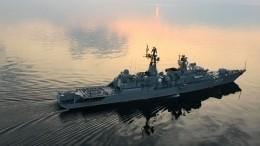 Украинский сторонник членства вНАТО заявил об«отсутствии» надводного флота РФ