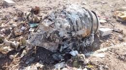 Иран поступил достойно, признав свою вину вкрушении Boeing-737— Джабаров
