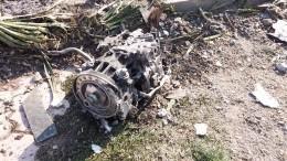 Эксперт объяснил, почему Иран быстро признал вину засбитый украинский Boeing